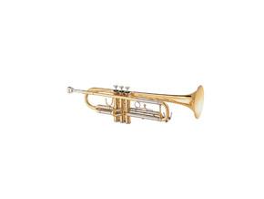Trumpet / cornet